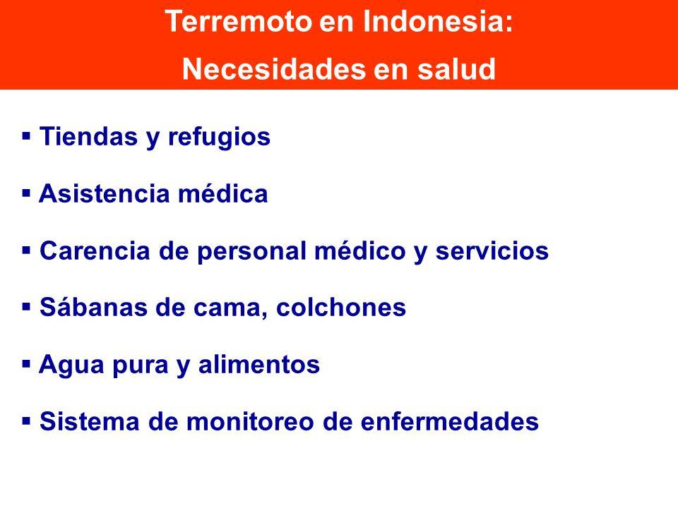 Tiendas y refugios Asistencia médica Carencia de personal médico y servicios Sábanas de cama, colchones Agua pura y alimentos Sistema de monitoreo de