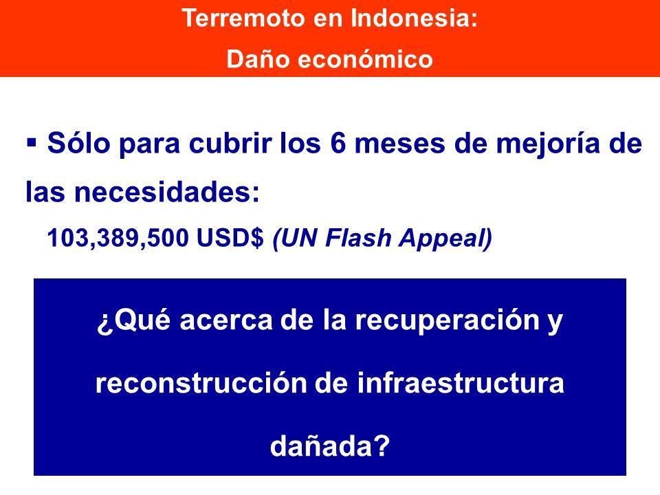 Sólo para cubrir los 6 meses de mejoría de las necesidades: 103,389,500 USD$ (UN Flash Appeal) Terremoto en Indonesia: Daño económico ¿Qué acerca de l