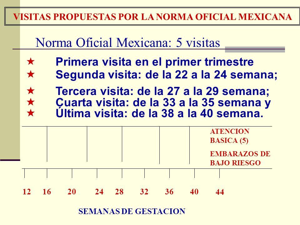 VISITAS PROPUESTAS POR LA NORMA OFICIAL MEXICANA 1216202428323640 44 ATENCION BASICA (5) EMBARAZOS DE BAJO RIESGO SEMANAS DE GESTACION Norma Oficial M