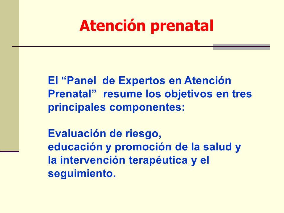 El Panel de Expertos en Atención Prenatal resume los objetivos en tres principales componentes: Evaluación de riesgo, educación y promoción de la salu