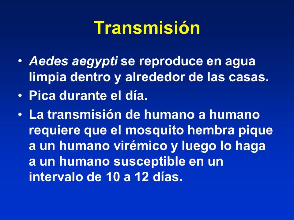 Transmisión Aedes aegypti se reproduce en agua limpia dentro y alrededor de las casas. Pica durante el día. La transmisión de humano a humano requiere