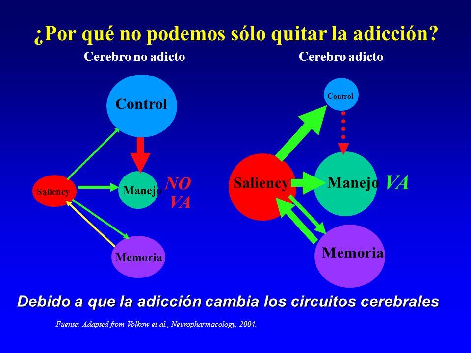 Fuente: Adapted from Volkow et al., Neuropharmacology, 2004. Manejo Saliency Memoria Control Cerebro no adicto NO VA Cerebro adicto Manejo Memoria Con