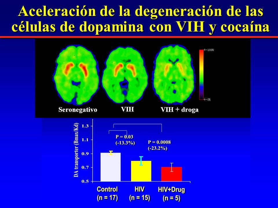 Seronegativo VIH VIH + droga Aceleración de la degeneración de las células de dopamina con VIH y cocaína