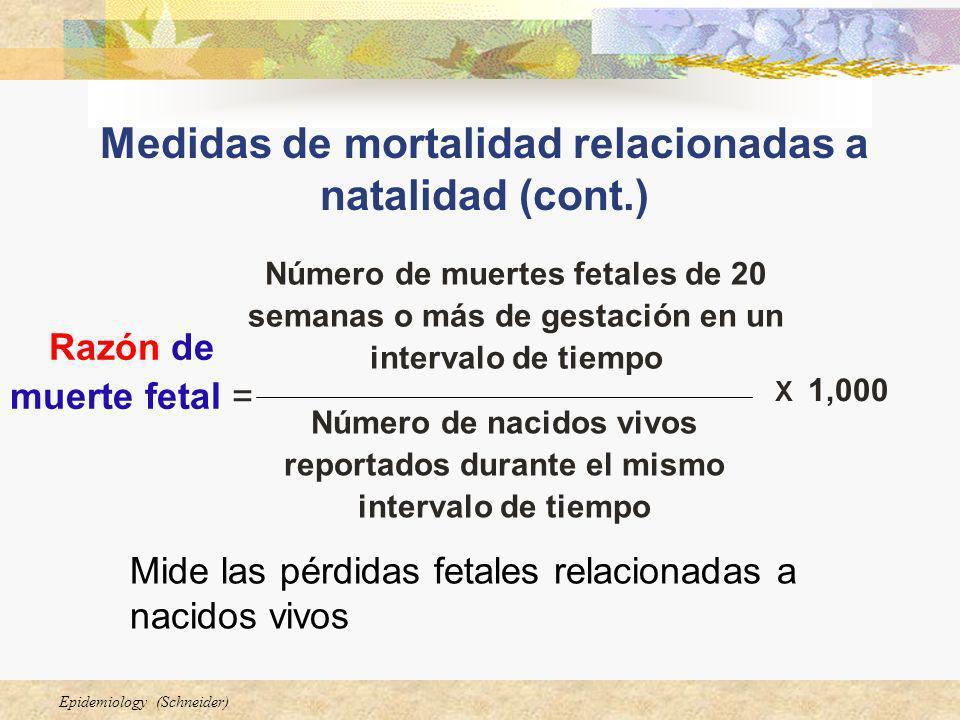 Epidemiology (Schneider) Medidas de mortalidad relacionadas a natalidad (cont.) Mide las pérdidas fetales relacionadas a nacidos vivos Número de nacid