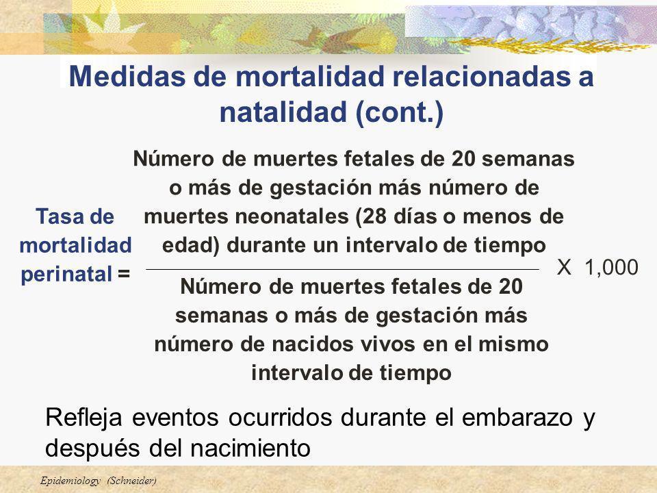 Epidemiology (Schneider) Refleja eventos ocurridos durante el embarazo y después del nacimiento Número de muertes fetales de 20 semanas o más de gesta