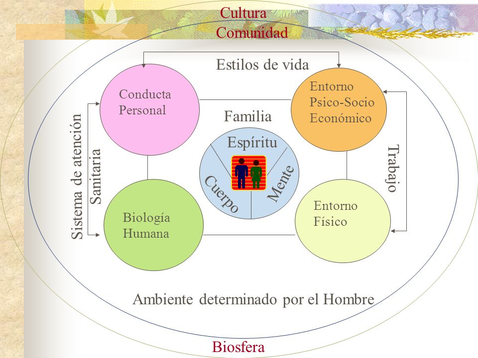 Entorno Psico-Socio Económico Conducta Personal Biología Humana Entorno Físico Mente Espíritu Cuerpo Estilos de vida Sistema de atención Sanitaria Tra