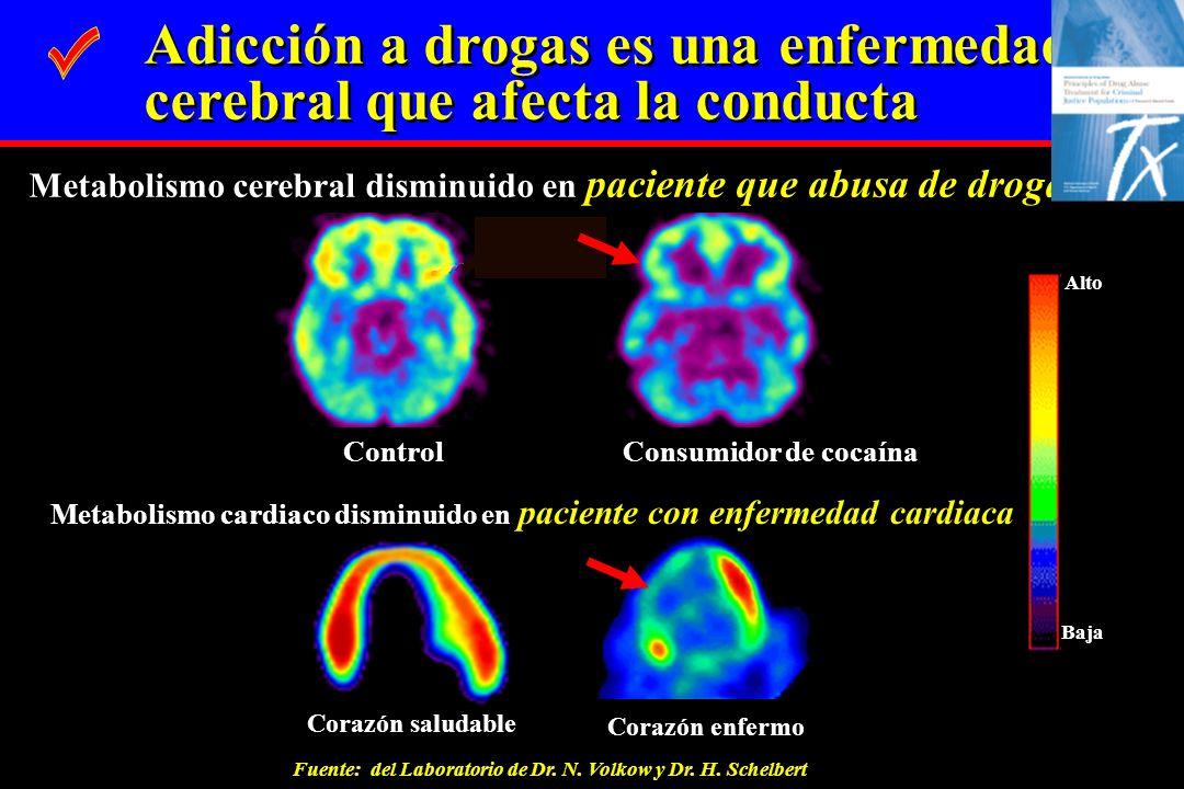 Corazón saludable Corazón enfermo Metabolismo cardiaco disminuido en paciente con enfermedad cardiaca Control Consumidor de cocaína Metabolismo cerebr