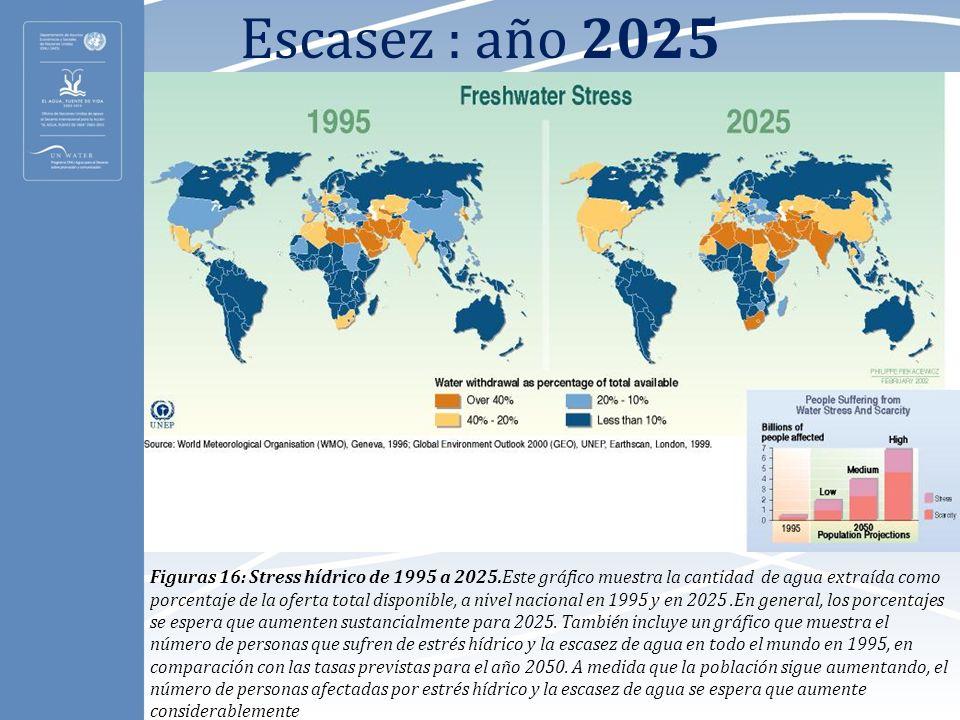 Escasez : año 2025 Figuras 16: Stress hídrico de 1995 a 2025.Este gráfico muestra la cantidad de agua extraída como porcentaje de la oferta total disp