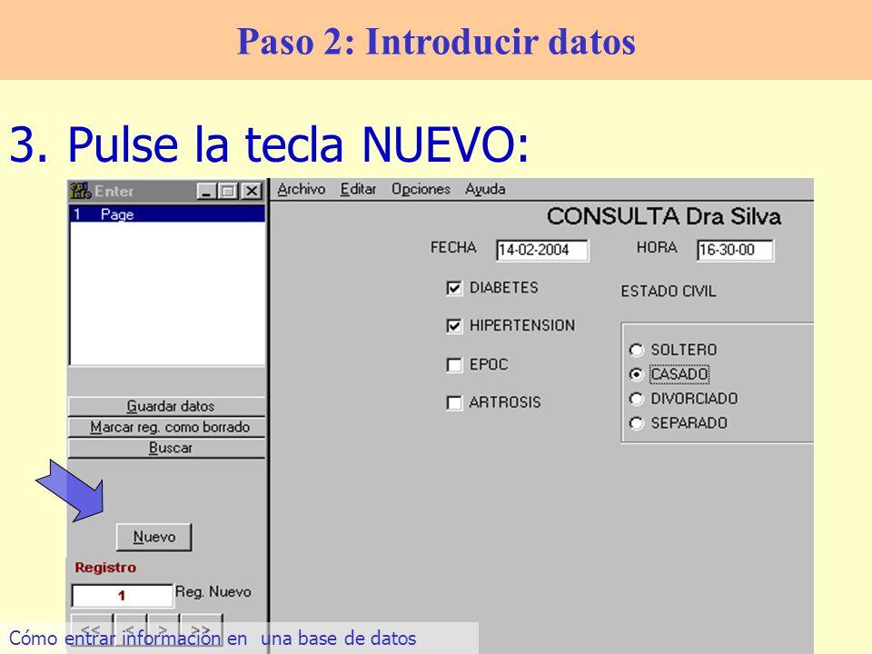 13 3.Pulse la tecla NUEVO: Paso 2: Introducir datos Cómo entrar información en una base de datos