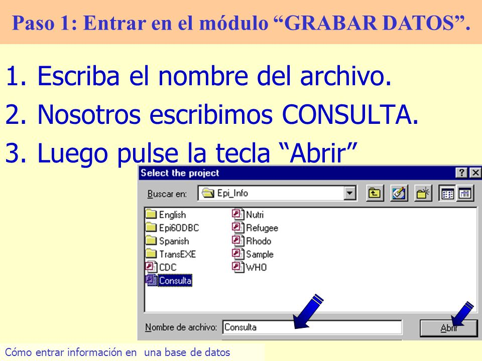19 10.Entramos los datos en cada variable: Paso 2: Introducir datos 11.Pulse en Nuevo Cómo entrar información en una base de datos