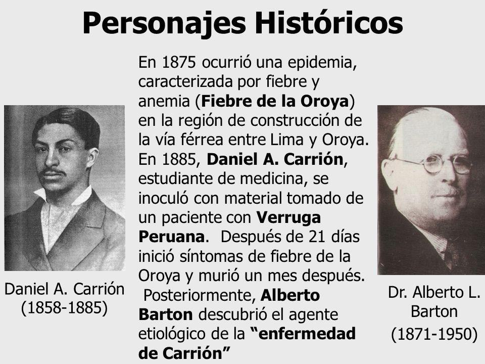 Dr. Alberto L. Barton (1871-1950) Daniel A. Carrión (1858-1885) En 1875 ocurrió una epidemia, caracterizada por fiebre y anemia (Fiebre de la Oroya) e