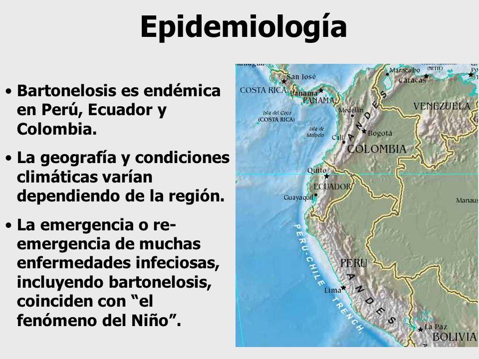 Epidemiología Bartonelosis es endémica en Perú, Ecuador y Colombia. La geografía y condiciones climáticas varían dependiendo de la región. La emergenc