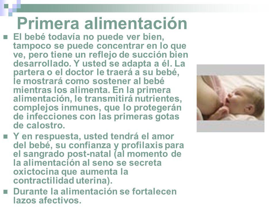 Primera alimentación El bebé todavía no puede ver bien, tampoco se puede concentrar en lo que ve, pero tiene un reflejo de succión bien desarrollado.