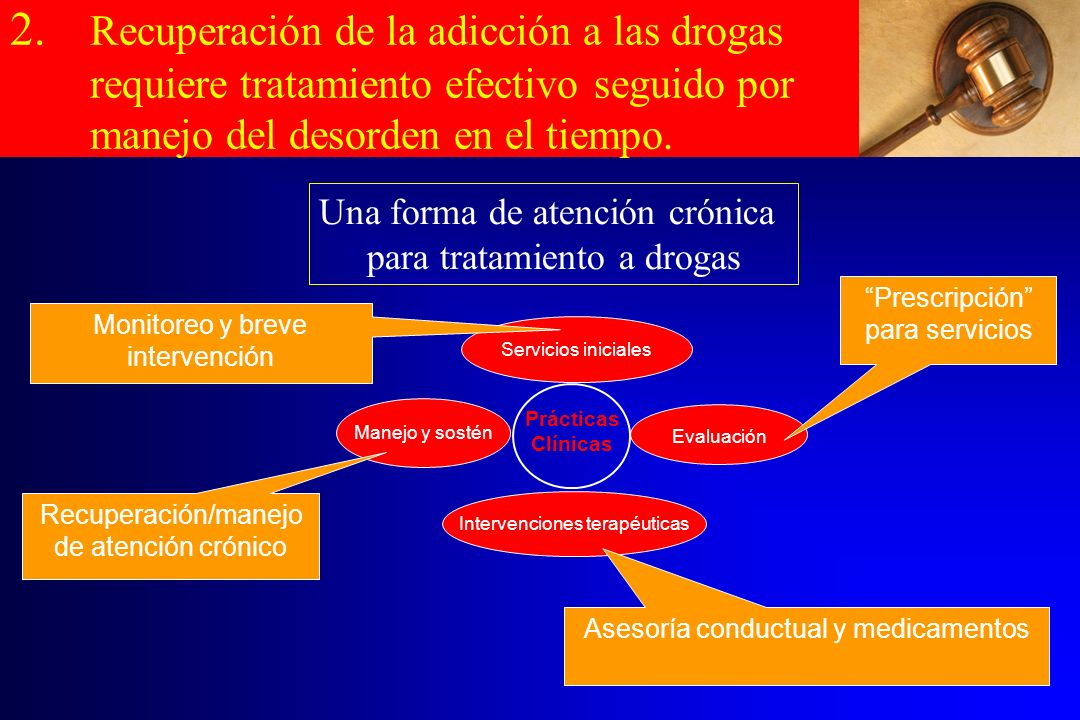 Prácticas Clínicas Servicios iniciales Manejo y sostén Intervenciones terapéuticas Evaluación Prescripción para servicios Asesoría conductual y medica