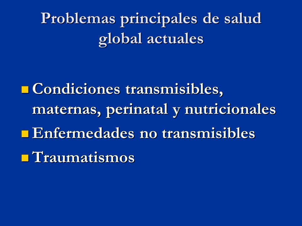 Problemas principales de salud global actuales Condiciones transmisibles, maternas, perinatal y nutricionales Condiciones transmisibles, maternas, perinatal y nutricionales Enfermedades no transmisibles Enfermedades no transmisibles Traumatismos Traumatismos