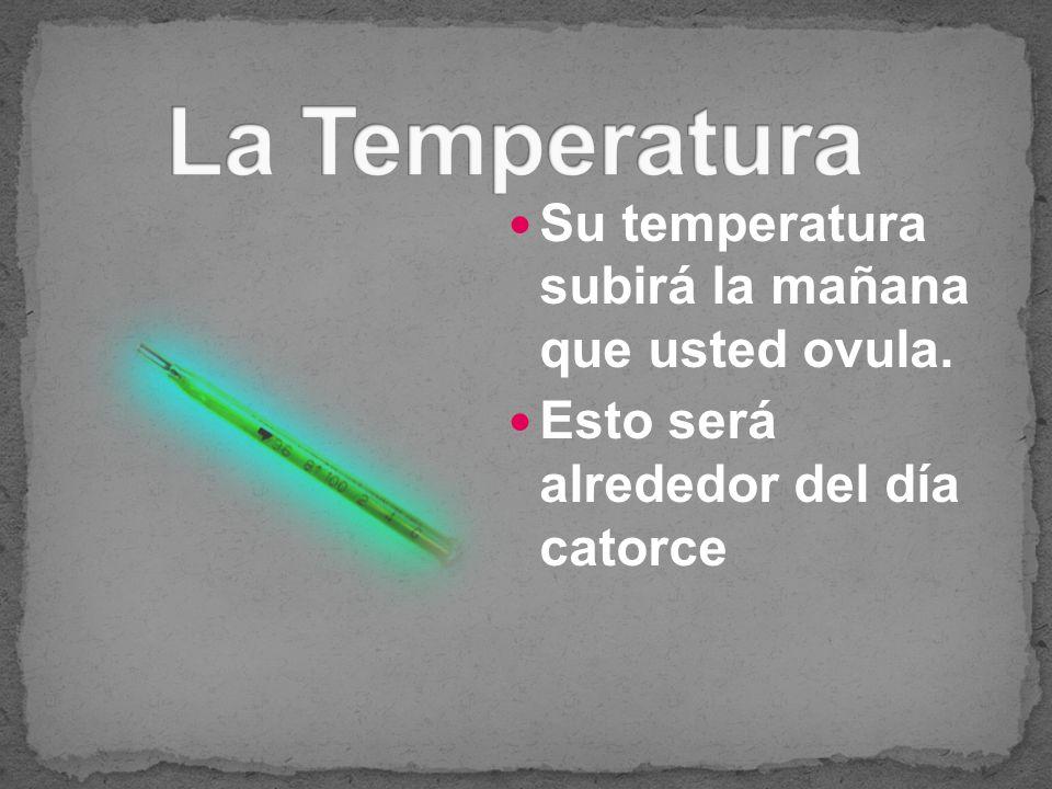 Su temperatura subirá la mañana que usted ovula. Esto será alrededor del día catorce