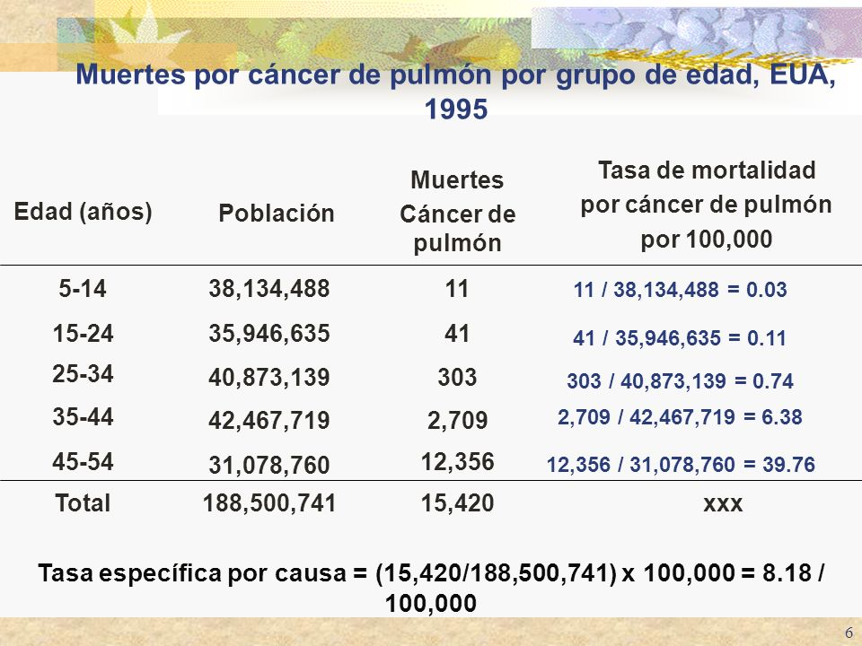 6 Muertes por cáncer de pulmón por grupo de edad, EUA, 1995 15,420xxx188,500,741Total 12,356 2,709 303 41 11 Muertes Cáncer de pulmón 12,356 / 31,078,