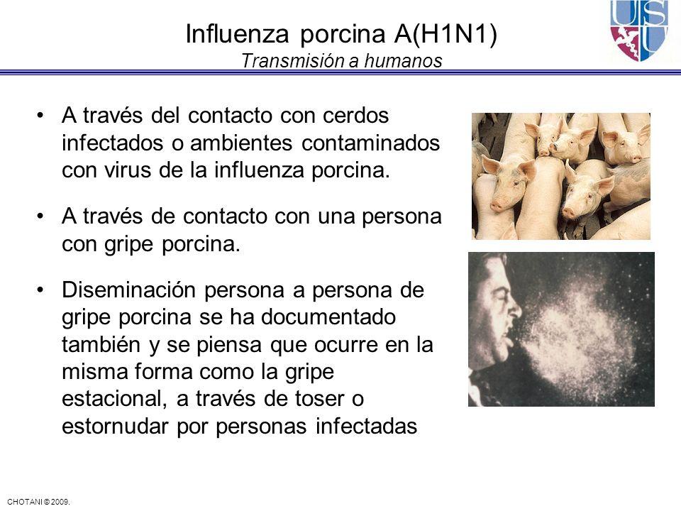 CHOTANI © 2009. Influenza porcina A(H1N1) Transmisión a humanos A través del contacto con cerdos infectados o ambientes contaminados con virus de la i