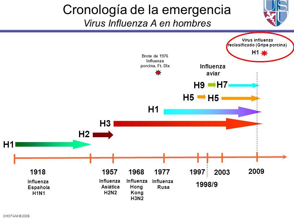 CHOTANI © 2009. 19181957196819771997 1998/9 2003 H1 H3 H2 H7 H5 H9 Influenza Española H1N1 Influenza Asiática H2N2 Influenza Rusa Influenza aviar Infl