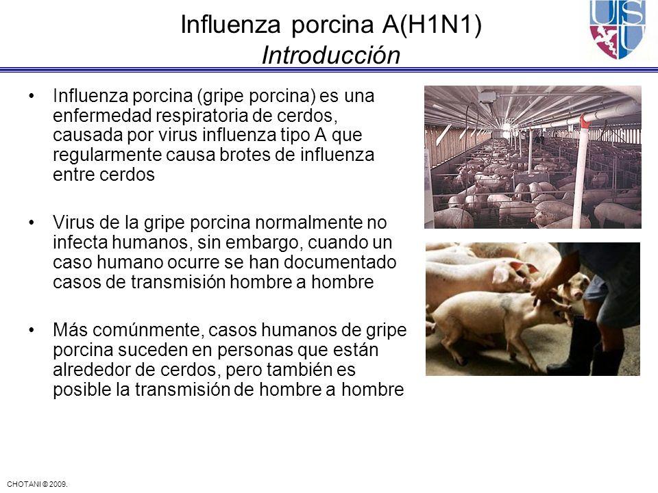 CHOTANI © 2009. Influenza porcina A(H1N1) Introducción Influenza porcina (gripe porcina) es una enfermedad respiratoria de cerdos, causada por virus i