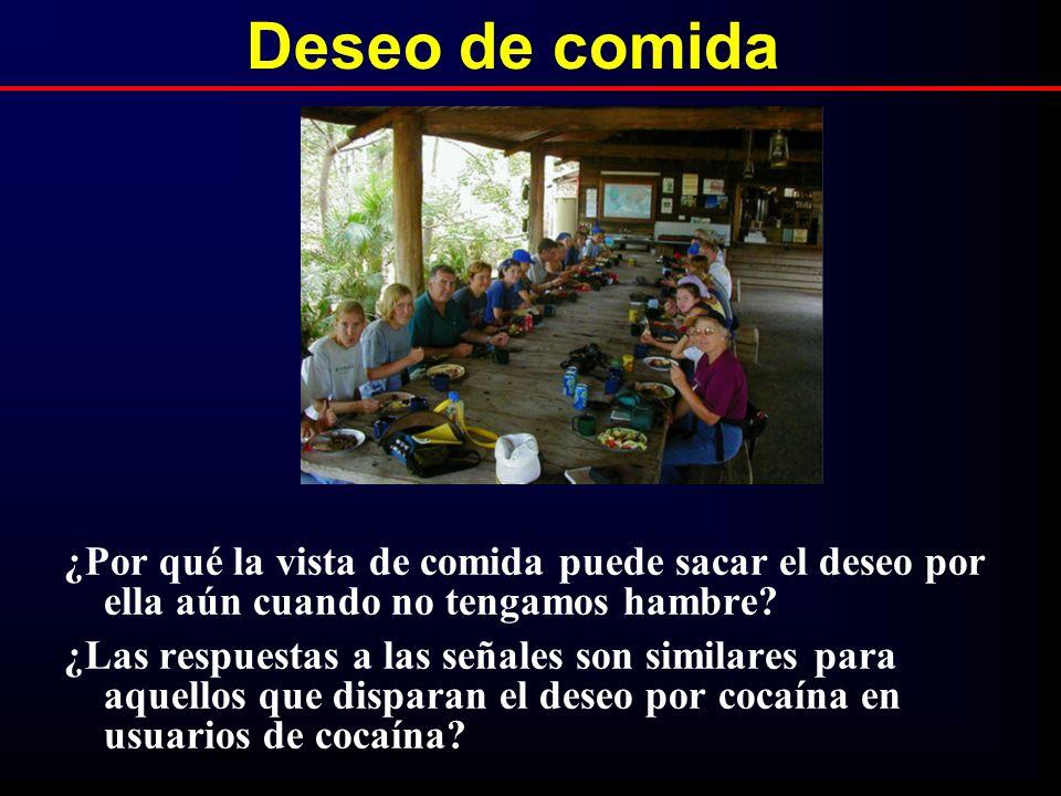 Deseo de comida ¿Por qué la vista de comida puede sacar el deseo por ella aún cuando no tengamos hambre? ¿Las respuestas a las señales son similares p