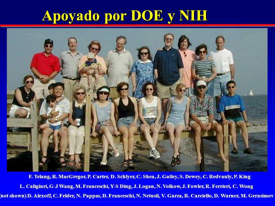Apoyado por DOE y NIH F. Telang, R. MacGregor, P. Carter, D. Schlyer, C. Shea, J. Gatley, S. Dewey, C. Redvanly, P. King L. Caligiuri, G-J Wang, M. Fr