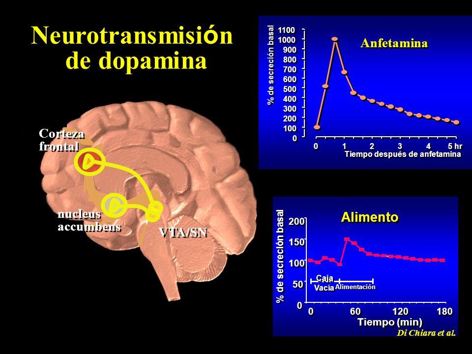Neurotransmisi ó n de dopamina VTA/SN nucleus accumbens nucleus accumbens Corteza frontal Corteza frontal 0 0 100 200 300 400 500 600 700 800 900 1000 1100 0 0 1 1 2 2 3 3 4 4 5 hr Tiempo después de anfetamina % de secreción basal Anfetamina 0 0 50 100 150 200 0 0 60 120 180 Tiempo (min) % de secreción basal Caja Vacía Alimentación Di Chiara et al.