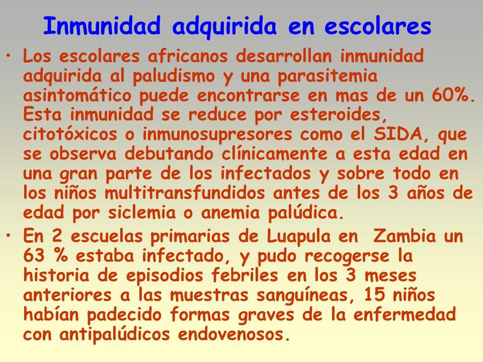 Inmunidad adquirida en escolares Los escolares africanos desarrollan inmunidad adquirida al paludismo y una parasitemia asintomático puede encontrarse