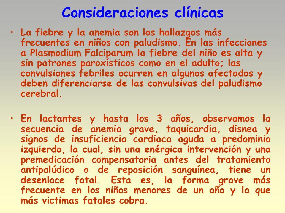 Consideraciones clínicas La fiebre y la anemia son los hallazgos más frecuentes en niños con paludismo. En las infecciones a Plasmodium Falciparum la