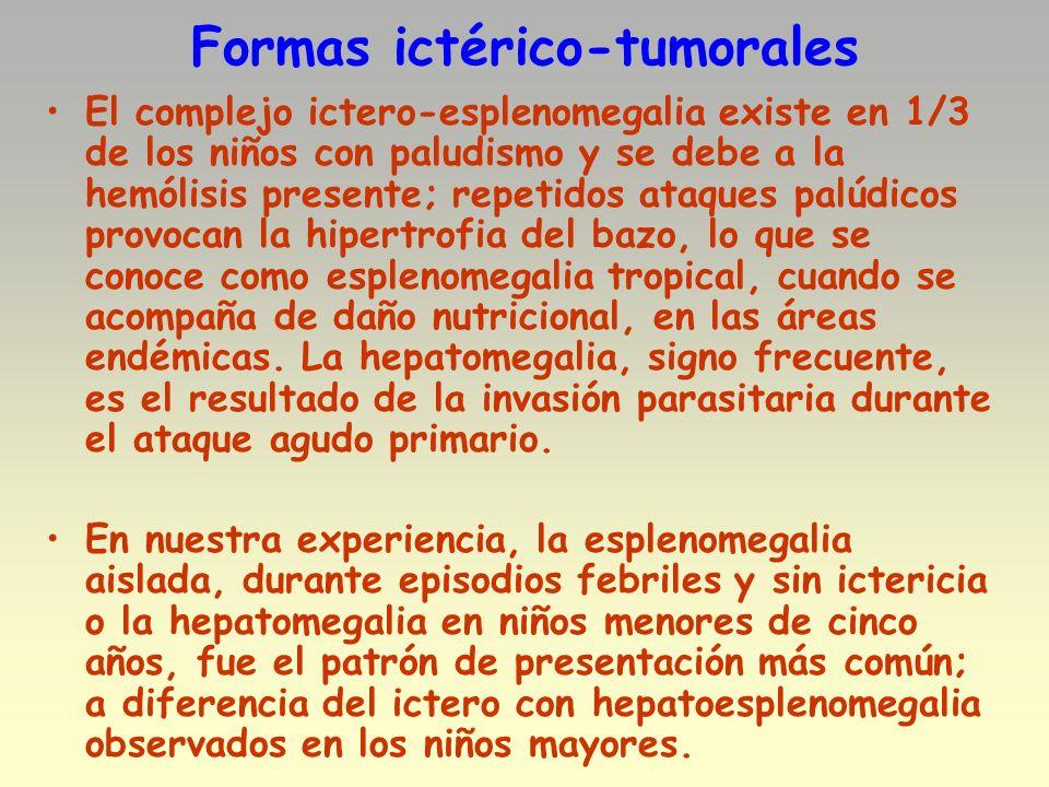 Formas ictérico-tumorales El complejo ictero-esplenomegalia existe en 1/3 de los niños con paludismo y se debe a la hemólisis presente; repetidos ataq