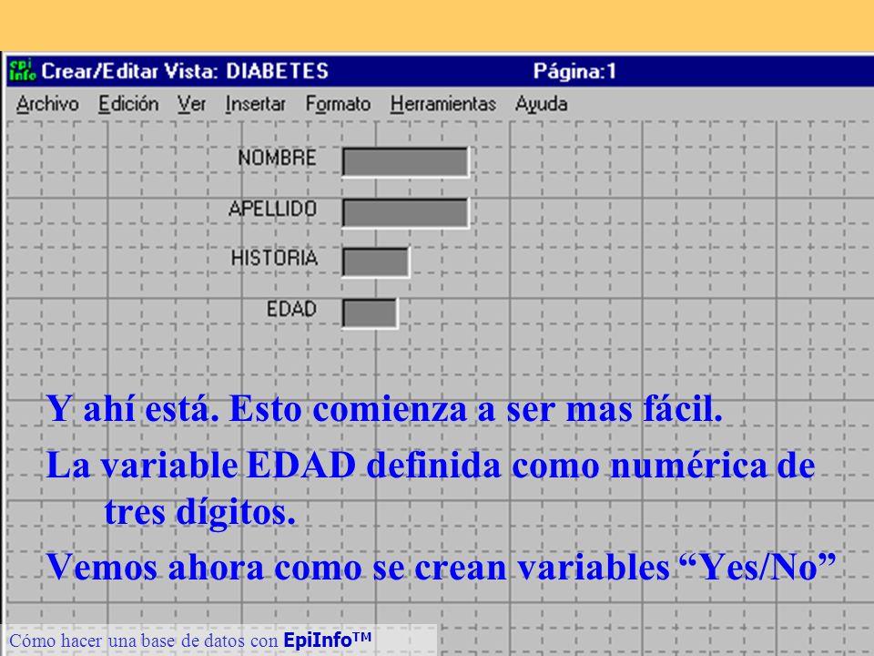 18 Cómo hacer una base de datos con EpiInfo TM Y ahí está. Esto comienza a ser mas fácil. La variable EDAD definida como numérica de tres dígitos. Vem