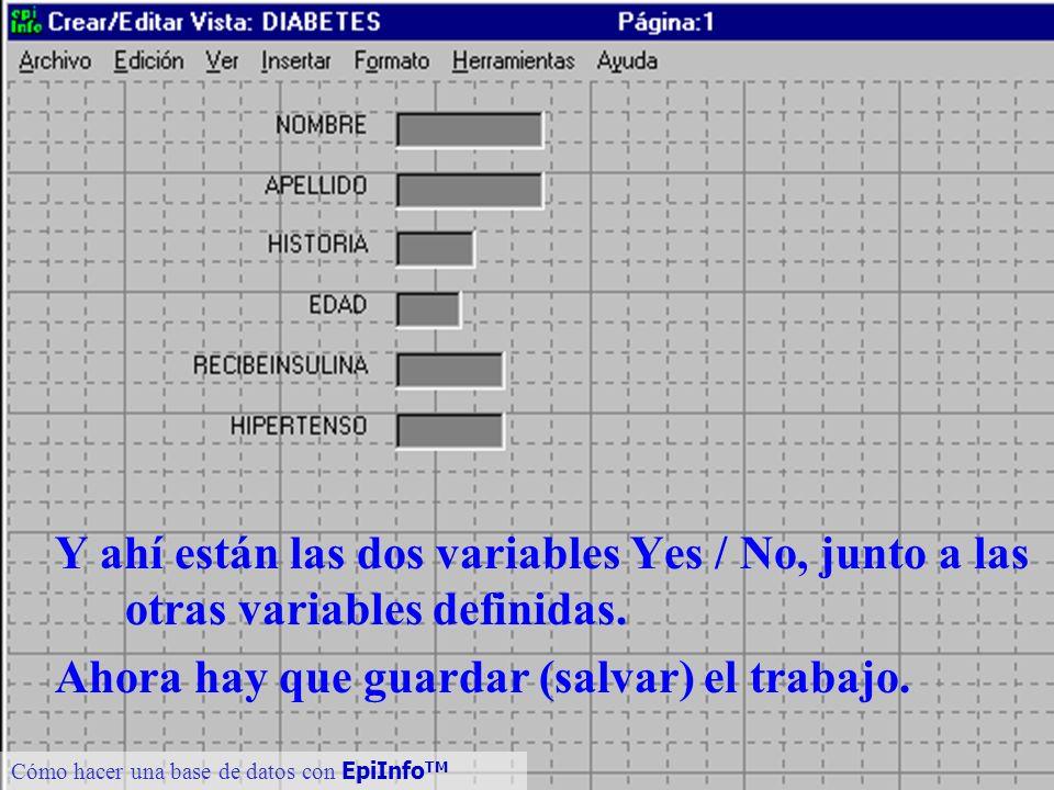 21 Cómo hacer una base de datos con EpiInfo TM Y ahí están las dos variables Yes / No, junto a las otras variables definidas. Ahora hay que guardar (s