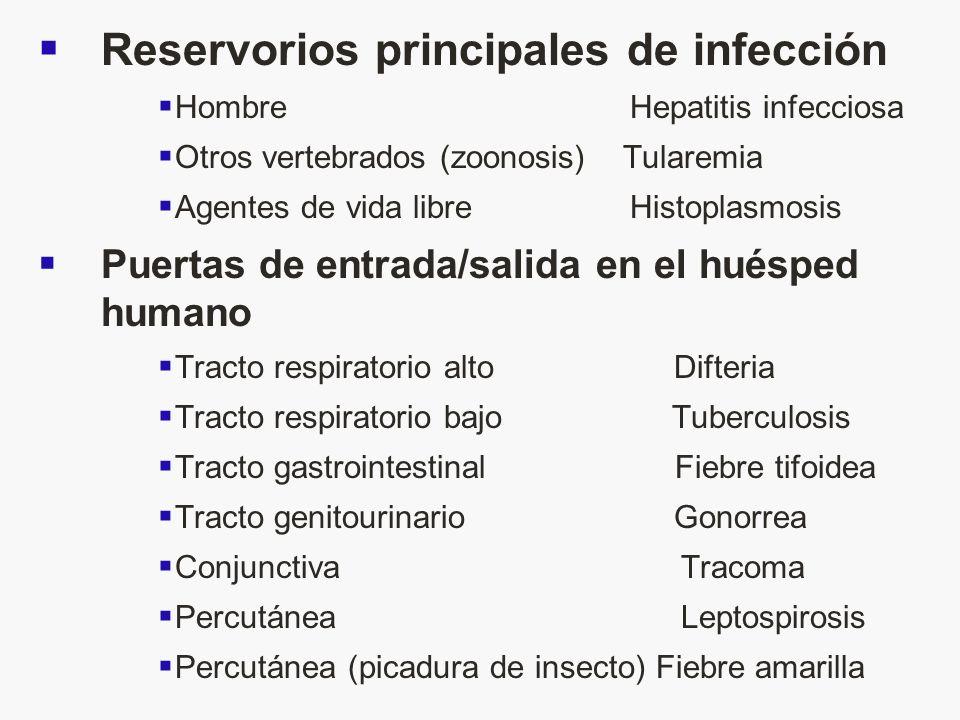 Reservorios principales de infección Hombre Hepatitis infecciosa Otros vertebrados (zoonosis) Tularemia Agentes de vida libre Histoplasmosis Puertas d