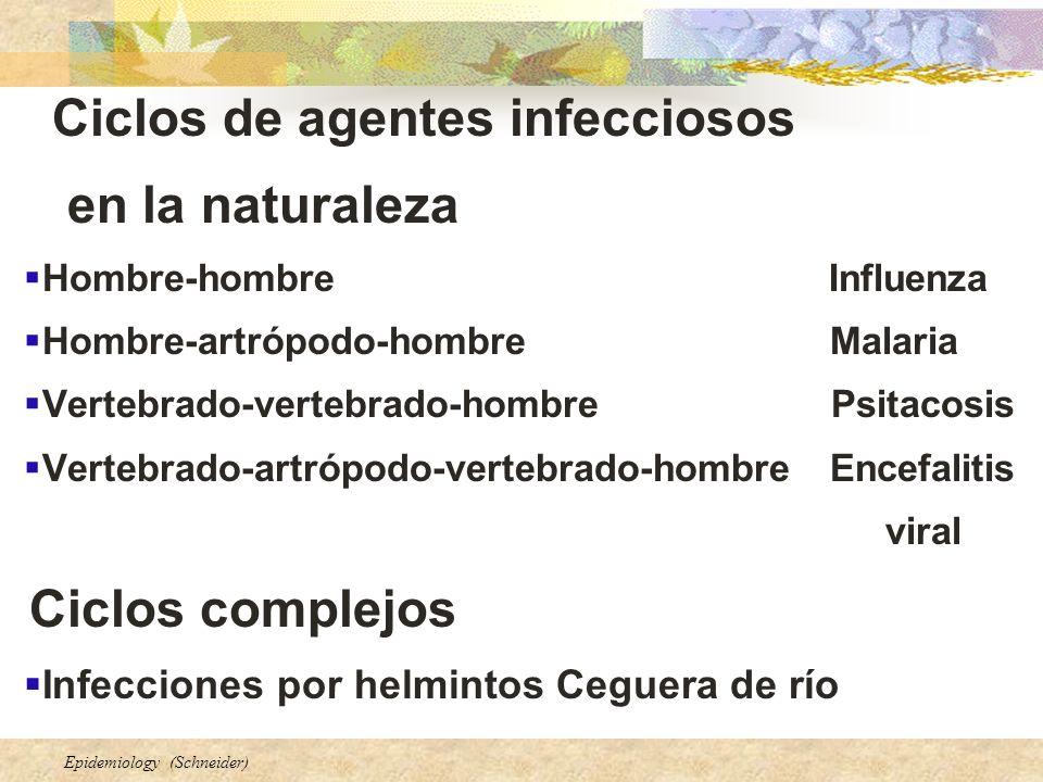 Epidemiology (Schneider) Ciclos de agentes infecciosos en la naturaleza Hombre-hombre Influenza Hombre-artrópodo-hombre Malaria Vertebrado-vertebrado-