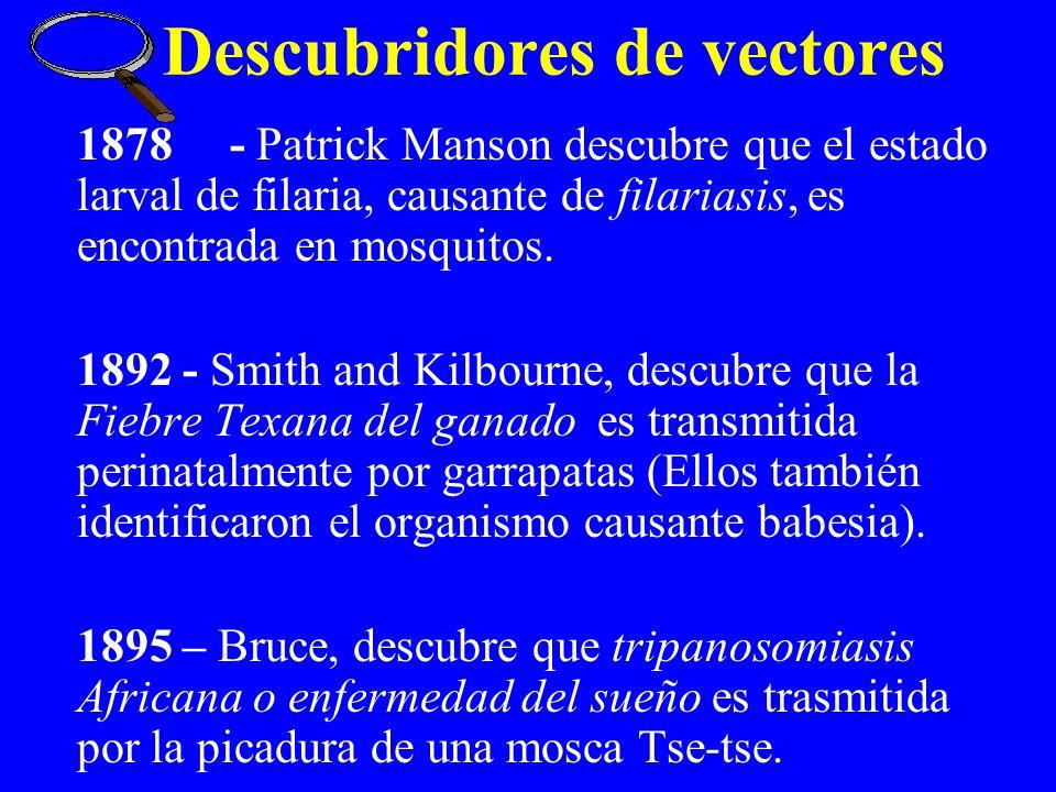 1878 - Patrick Manson descubre que el estado larval de filaria, causante de filariasis, es encontrada en mosquitos. 1892 - Smith and Kilbourne, descub