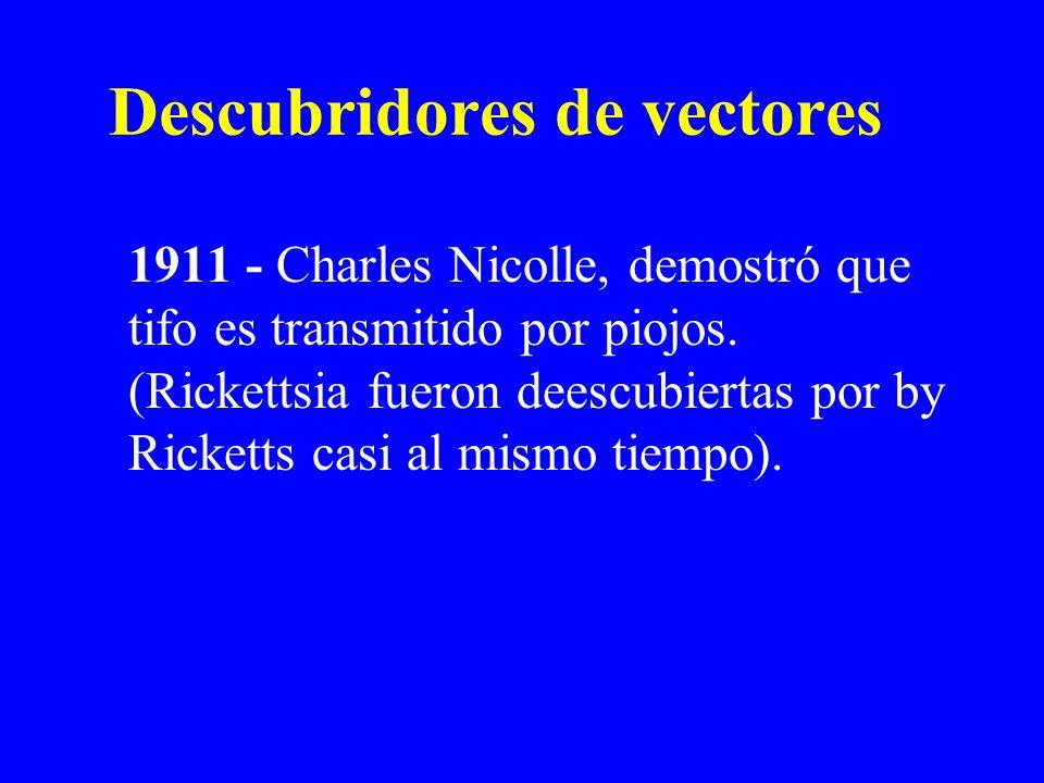 Descubridores de vectores 1911 - Charles Nicolle, demostró que tifo es transmitido por piojos. (Rickettsia fueron deescubiertas por by Ricketts casi a