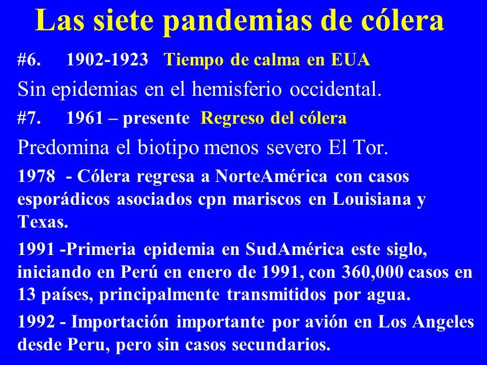 Las siete pandemias de cólera #6.1902-1923Tiempo de calma en EUA Sin epidemias en el hemisferio occidental. #7.1961 – presente Regreso del cólera Pred