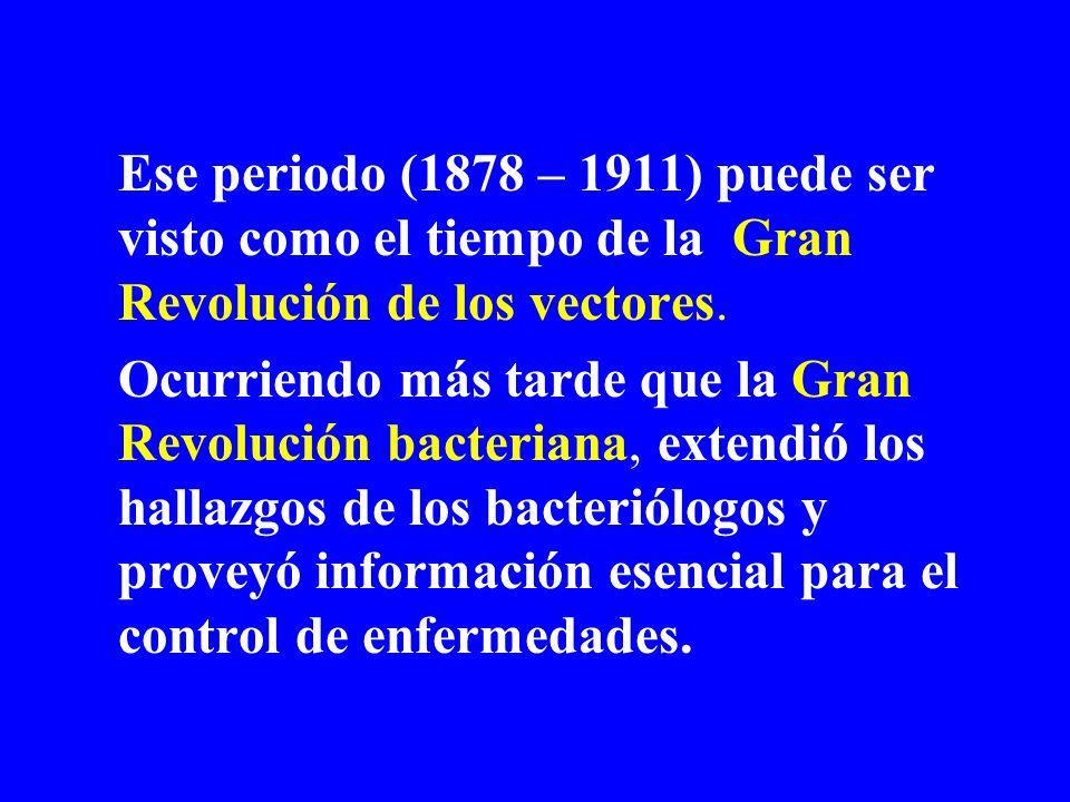 Ese periodo (1878 – 1911) puede ser visto como el tiempo de la Gran Revolución de los vectores. Ocurriendo más tarde que la Gran Revolución bacteriana