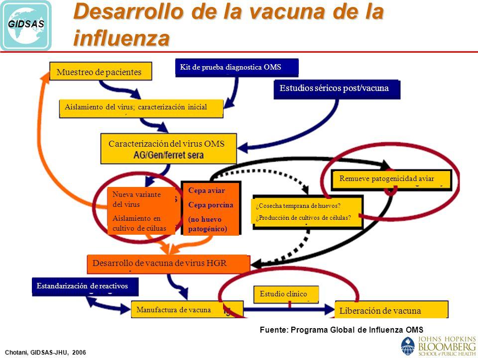 Chotani, GIDSAS-JHU, 2006 GIDSAS Desarrollo de la vacuna de la influenza Fuente: Programa Global de Influenza OMS Muestreo de pacientes Estandarización de reactivos Estudios séricos post/vacuna Aislamiento del virus; caracterización inicial Desarrollo de vacuna de virus HGR Remueve patogenicidad aviar Liberación de vacuna Estudio clínico Kit de prueba diagnostica OMS Manufactura de vacuna Cepa aviar Cepa porcina (no huevo patogénico) Caracterización del virus OMS Nueva variante del virus Aislamiento en cultivo de cúluas ¿Cosecha temprana de huevos.