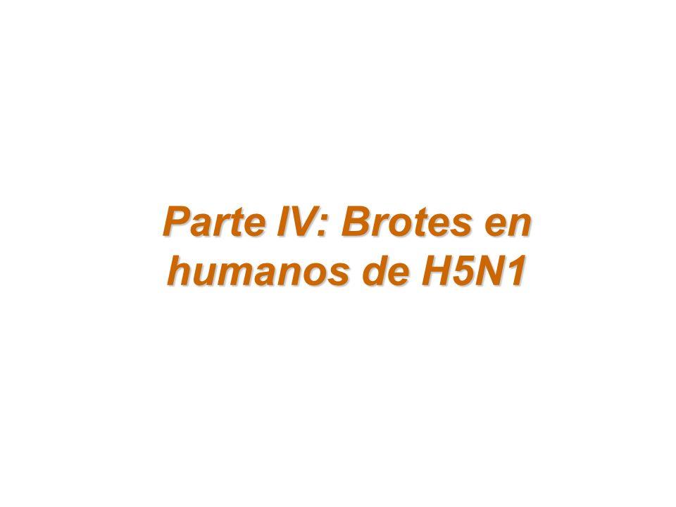 Parte IV: Brotes en humanos de H5N1