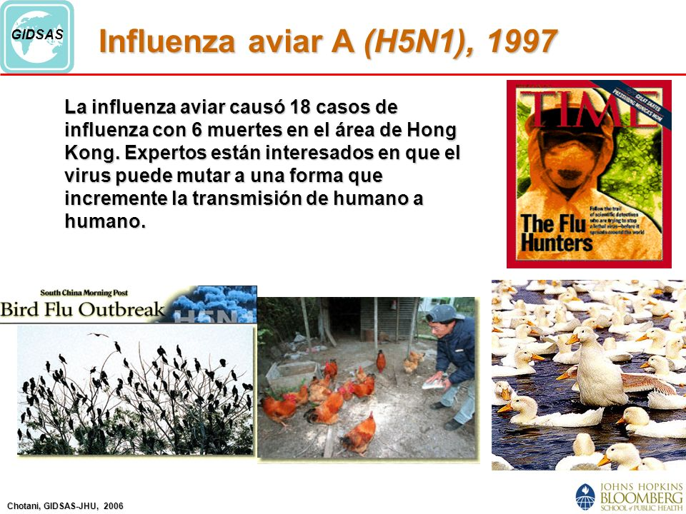 Chotani, GIDSAS-JHU, 2006 GIDSAS Influenza aviar A (H5N1), 1997 La influenza aviar causó 18 casos de influenza con 6 muertes en el área de Hong Kong.