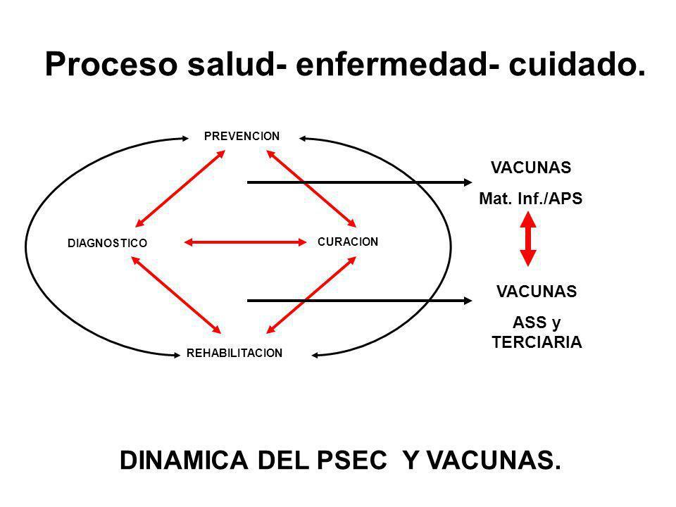 PREVENCION REHABILITACION DIAGNOSTICO CURACION VACUNAS Mat. Inf./APS VACUNAS ASS y TERCIARIA DINAMICA DEL PSEC Y VACUNAS. Proceso salud- enfermedad- c