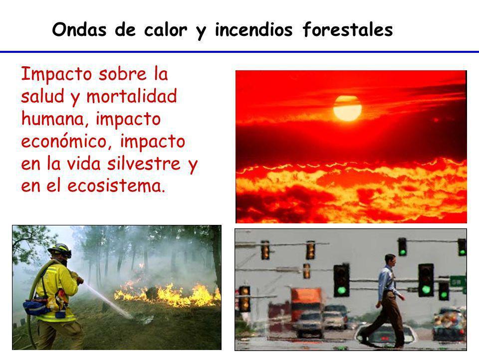 Impacto sobre la salud y mortalidad humana, impacto económico, impacto en la vida silvestre y en el ecosistema. Ondas de calor y incendios forestales