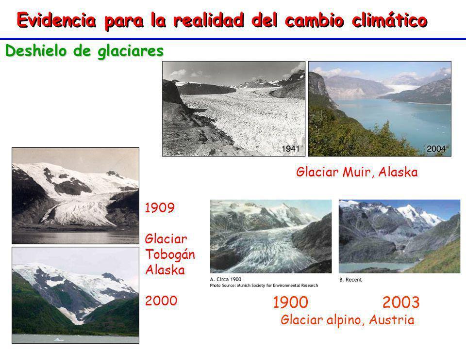 Evidencia para la realidad del cambio climático Deshielo de glaciares 1900 2003 Glaciar alpino, Austria 1900 2003 Glaciar alpino, Austria 1909 Glaciar