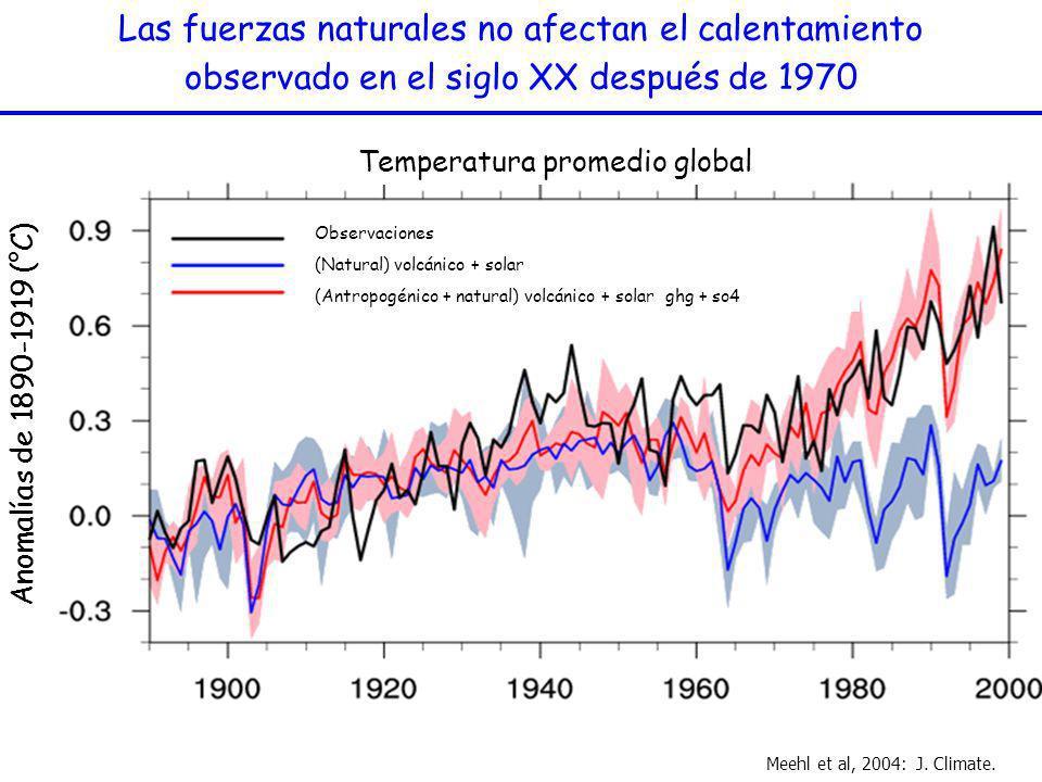 Las fuerzas naturales no afectan el calentamiento observado en el siglo XX después de 1970 Meehl et al, 2004: J. Climate. Anomalías de 1890-1919 (°C)