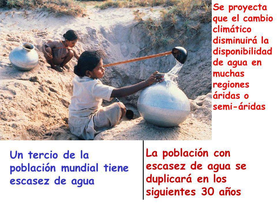 Water Services Un tercio de la población mundial tiene escasez de agua La población con escasez de agua se duplicará en los siguientes 30 años Se proy