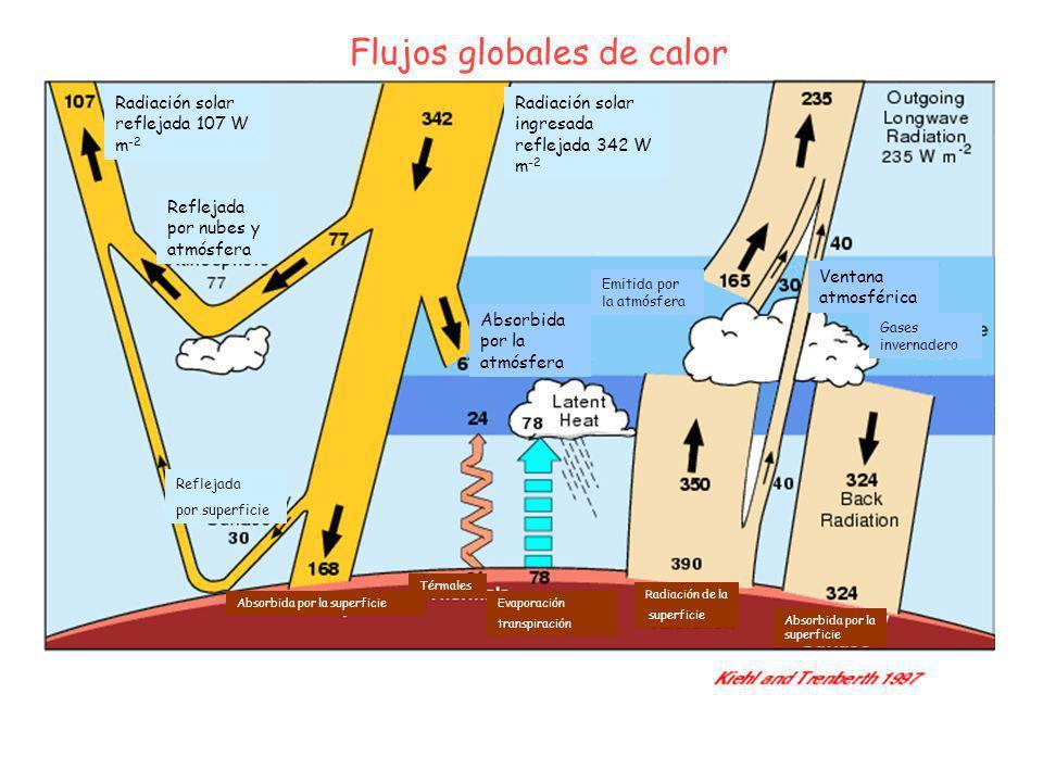 Radiación solar reflejada 107 W m -2 Flujos globales de calor Radiación solar ingresada reflejada 342 W m -2 Absorbida por la atmósfera Gases invernad