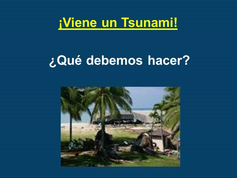 ¿Qué debemos hacer? ¡Viene un Tsunami!