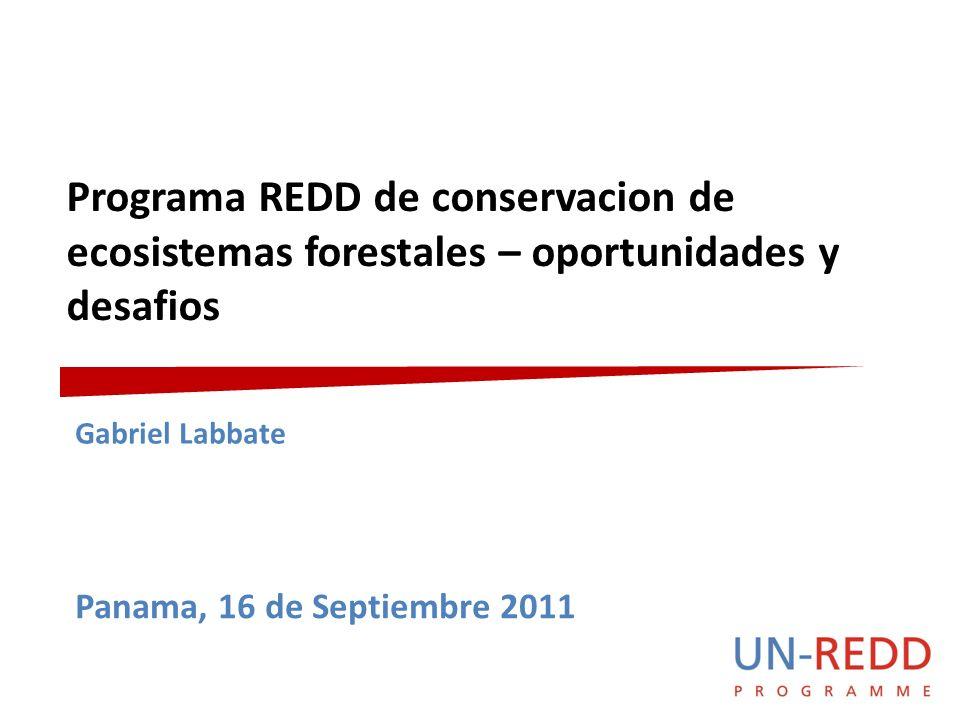 Programa REDD de conservacion de ecosistemas forestales – oportunidades y desafios Gabriel Labbate Panama, 16 de Septiembre 2011