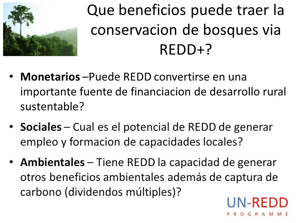 Monetarios –Puede REDD convertirse en una importante fuente de financiacion de desarrollo rural sustentable.